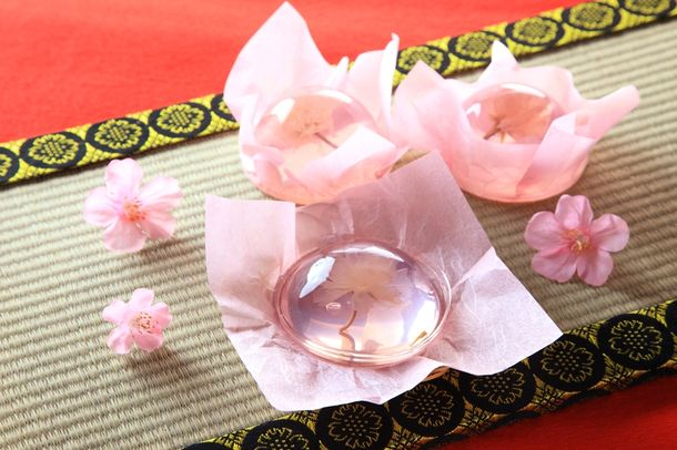 "Sakura jelly desserts are beautiful and back on sale so your ""cherry blossoms will bloom"""