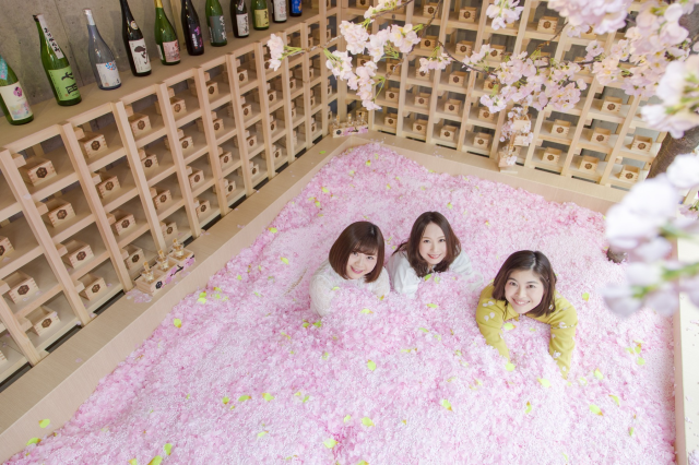Ridiculously awesome cherry blossom bar with sakura pool opening in Tokyo【Photos】