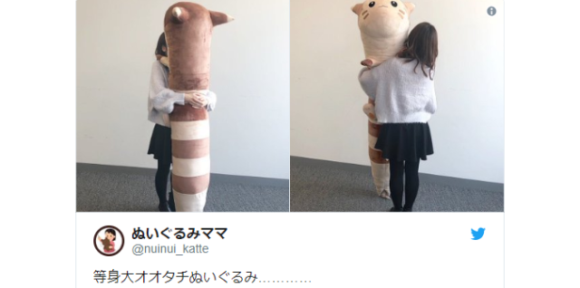 Life-sized Pokémon Furret plush is big enough to knock you out in one move