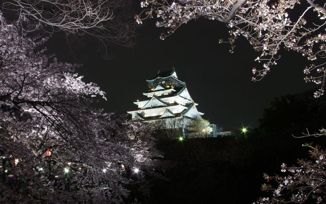 The 10 best castles in Japan, as chosen by experts and fans