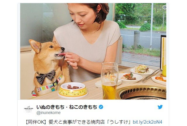 Yakiniku chain store lets customers enjoy delicious Japanese barbecue together with their dogs