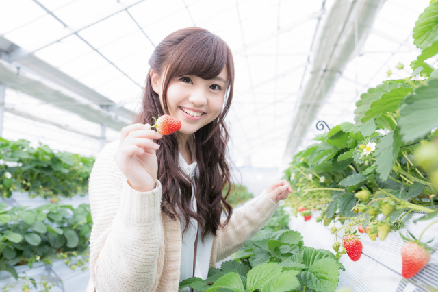 Japanese man's job is too busy for strawberry-picking date, super-sweet girlfriend saves the day