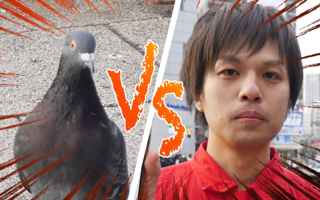 We dare Tokyo's pigeons to crap on us because we think it'll make us rich【Experiment】
