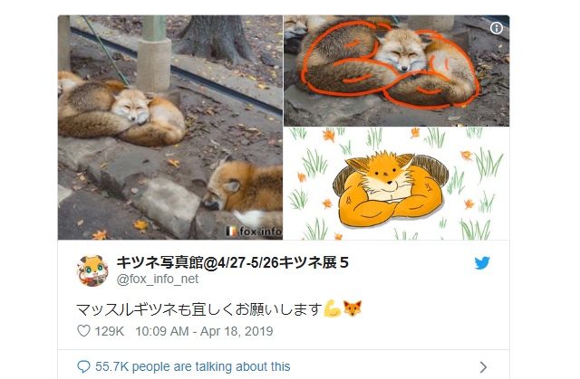 Japanese netizen takes photo of cuddly foxes, draws burly monstrosity out of it
