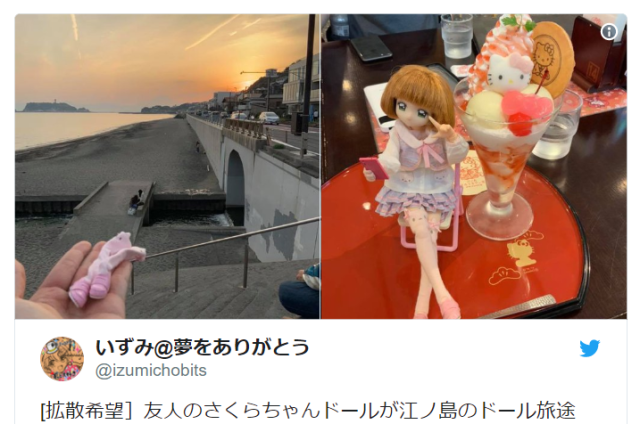 Otaku's beloved anime-style doll kidnapped, maybe murdered by bird of prey at Japanese beach