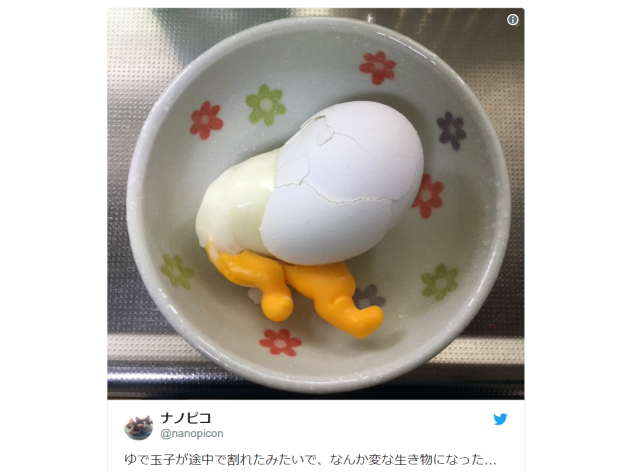 "Sanrio terror — Horrifying ""real-world Gudetama"" appears in Japanese kitchen"
