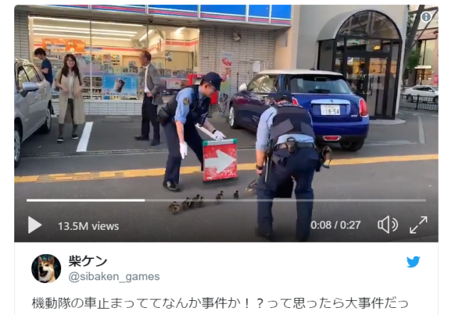 Japanese riot cops provide police escort for mother and 10 children…who are all ducks【Video】