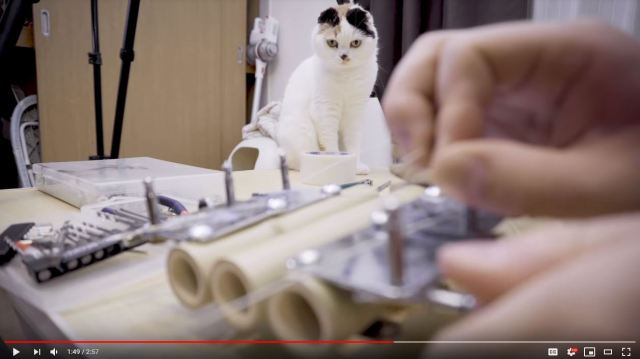 Japanese artist and cat make bamboo guitar that serves nagashi somen noodles on hot summer days