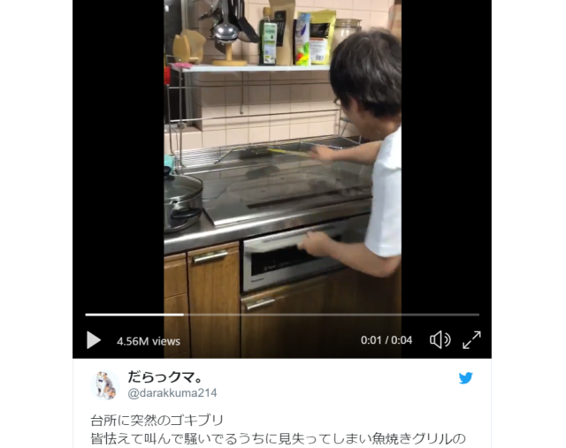 Japanese mom keeps cool, lays down hot, hilarious drum beat to scare off cockroach invader【Video】