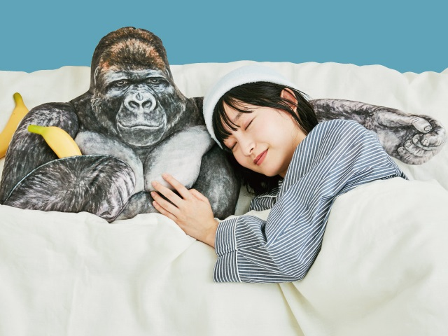 Handsome macho gorilla pillow lets you snuggle on its ripped chest for a comfortable sleep