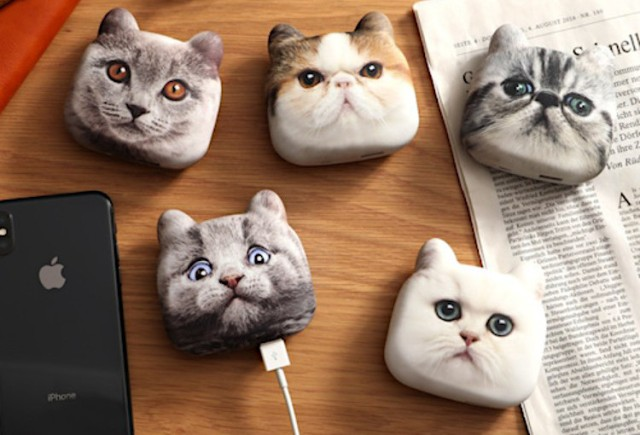 Charge up your phone with the power of a portable cat battery from Japan