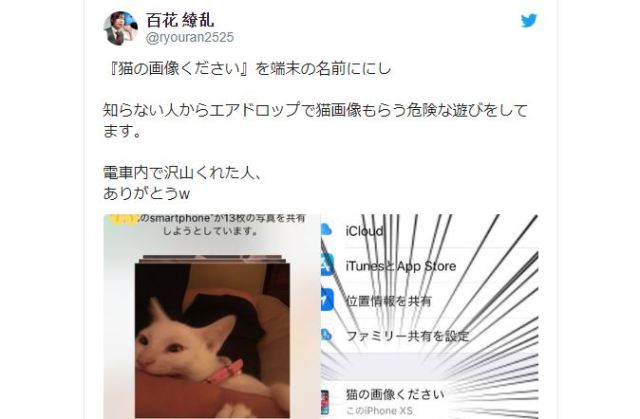 "Japanese man changed name of his iPhone to ""Please send cat pictures"" and it worked"