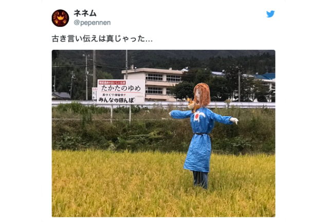 Ghibli scarecrow protects rice fields in countryside Japan