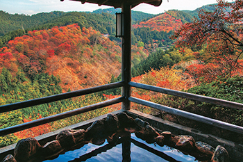 The top 10 hot springs Japanese travelers want to visit this fall
