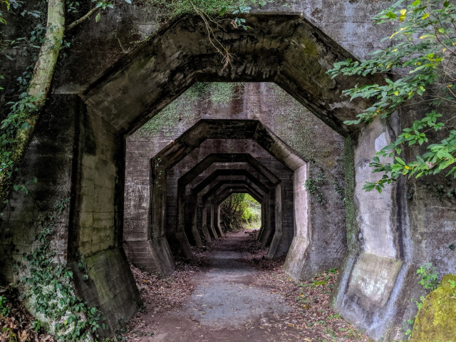 Japan Travel: Explore a mysterious hidden octagonal tunnel in the mountains of Kyushu