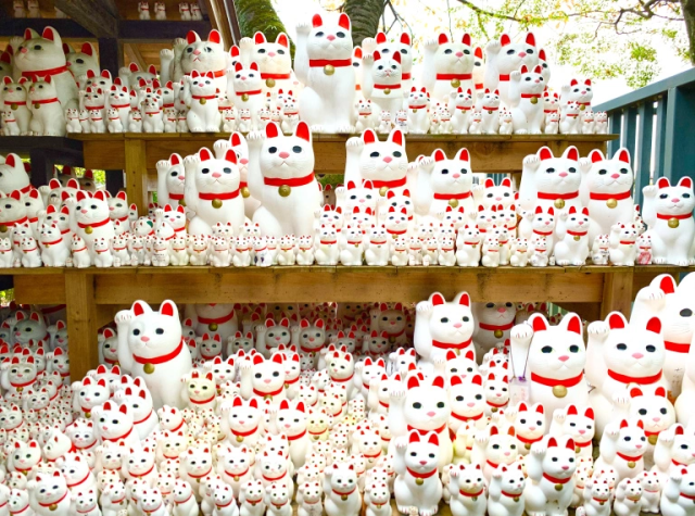 A visit to Tokyo's luckiest, kitty-est lucky cat temple: Gotokuji【Photos】