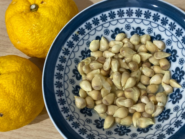 We make a DIY face gel out of yuzu seeds, and it's surprisingly cheap and easy!