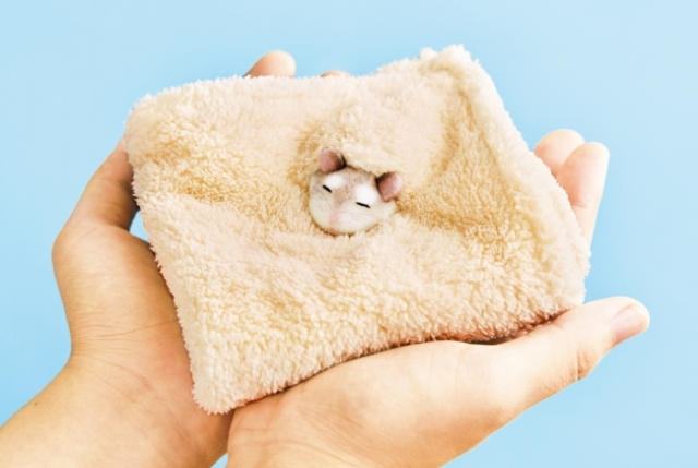 Kick off the Year of the Rat with hanky resembling a hamster sleeping in sawdust