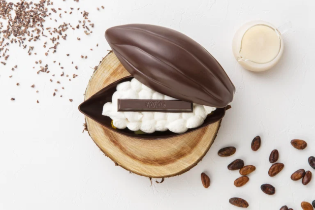 Kit Kat's crazy new cocoa pod dessert is only available at its Tokyo cafe【Photos】