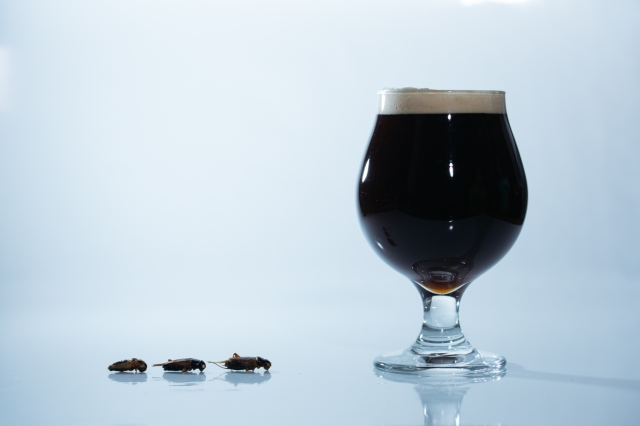 Dark ale made with crickets coming to Shibuya this March