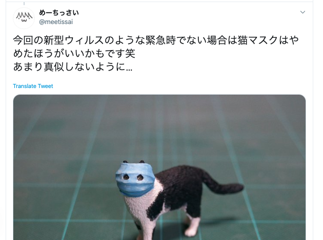The Cat in the Surgical Mask – Twitter user plans to raise money for charity with feline figurine