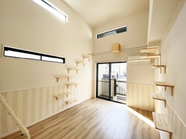 Japan's new apartments for singles with cats let you live with the only companion you need