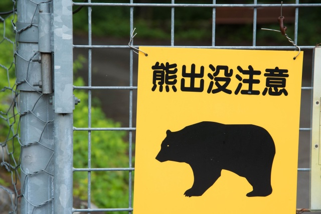 "82-year-old woman fights off bear in Japan: ""I sent him flying"""
