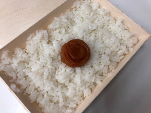 "THAT MUCH for white rice and one tiny plum? Eating Japan's most-expensive ""cheap"" bento【Taste test】"