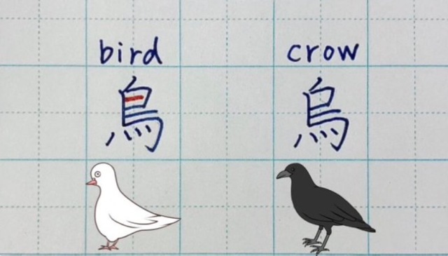 Japanese teacher shares surprising reason why the kanji for crow has one less line than bird