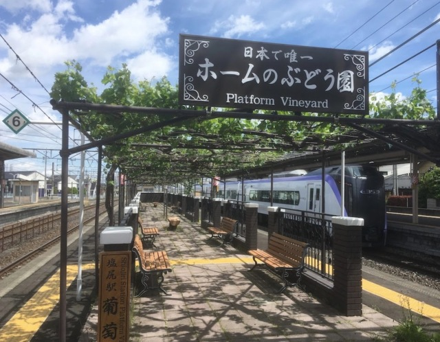 Japanese train station grows wine grapes on the platform