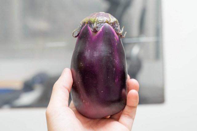 "We tried eating a raw ""mizu nasu"" eggplant, and it tastes like a weird fruit【Taste Test】"