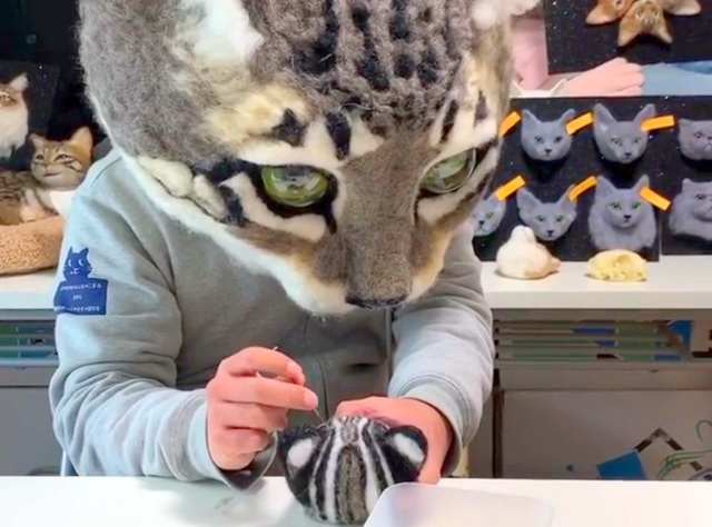 Japan's leading maker of giant cat heads needs your help!