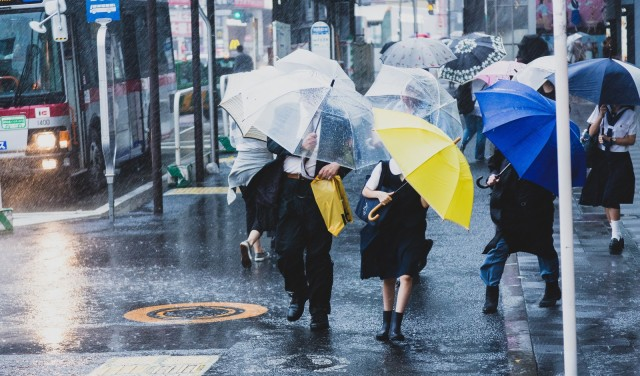 Back to the Future II-style weather forecasts developed by Japanese universities