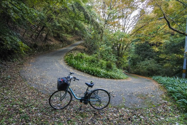 Japanese man rides 1,000 kilometres on stolen mamachari bicycle to see Tokyo for first time