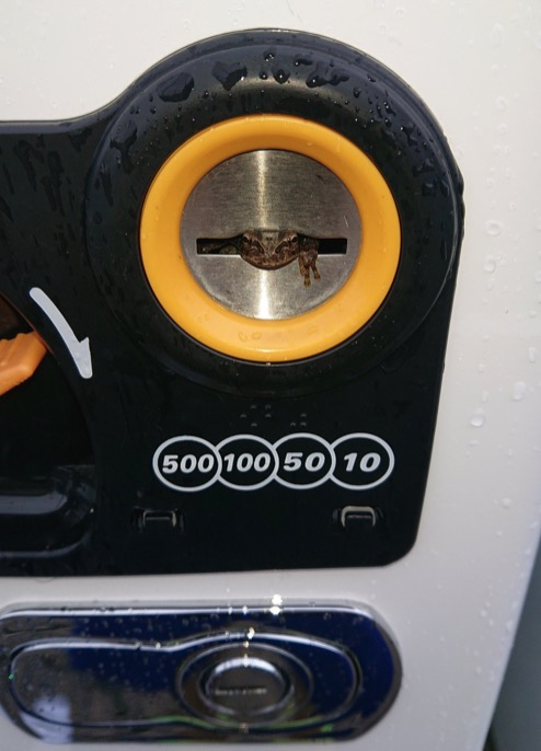 Coin Slot Eyes