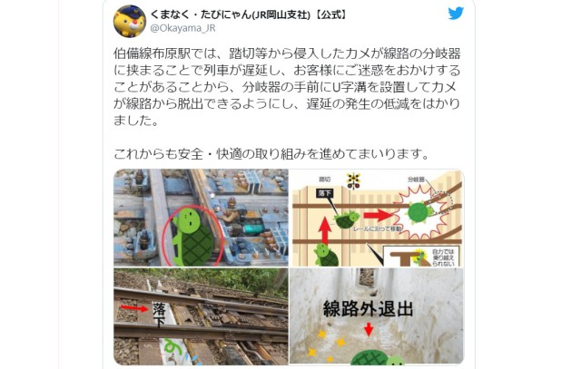JR West comes up with brilliant plan to save turtles and prevent train delays, touches netizens