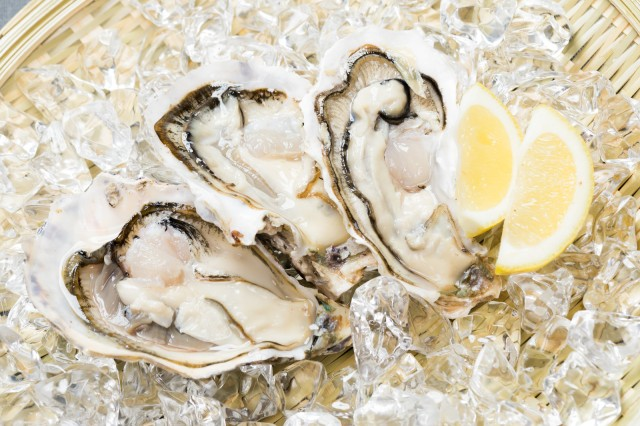 Is it dangerous to slurp oysters straight from the shell? Japan's Ministry of Health weighs in