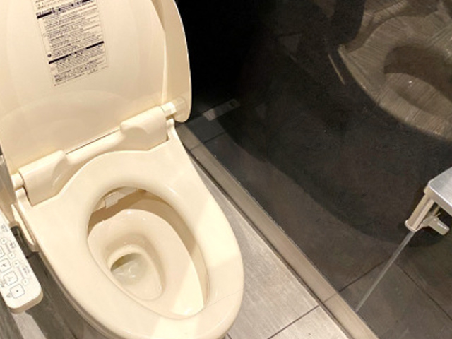"Japanese comedian apologizes for his many ""multipurpose toilet affairs"""
