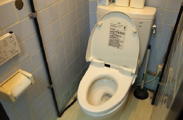 Serial toilet thief captured by police in Japan