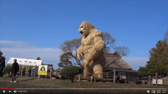 Fukuoka town erects 7-meter gorilla scarecrow as symbol of strength against COVID-19