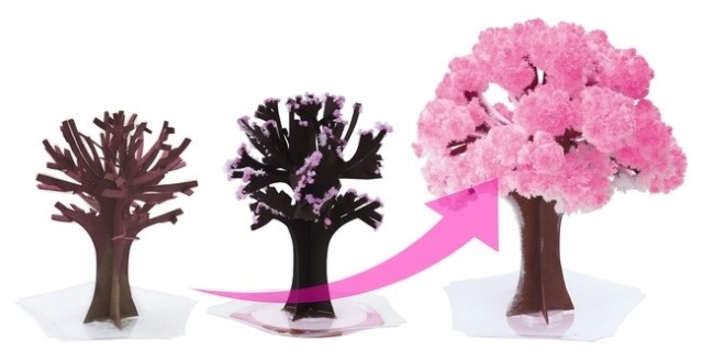 Sakura Magic recreates the full emotional arc of cherry blossom season right on your desk【Photos】