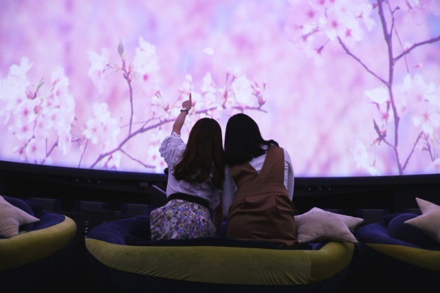Tokyo planetarium offering 360-degree sakura experience and raspberry-tasting space