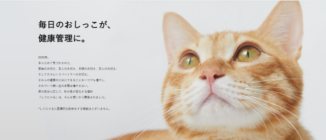 New color-changing cat sand from Japan reaches crowdfunding goal
