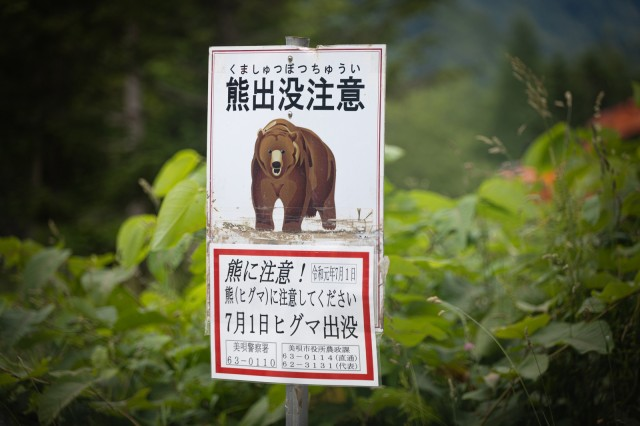 Death of a Japanese man attacked by bear sparks conversation about what to do when facing off with one