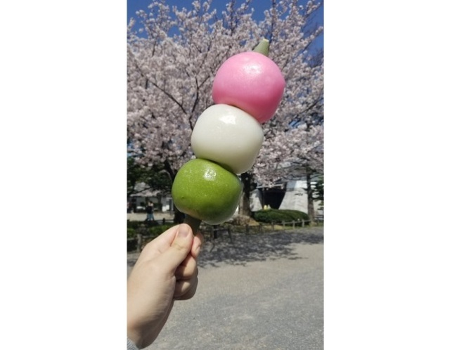 Japanese netizen goes ham for hanami with supersized dango and we live for it【Photos】