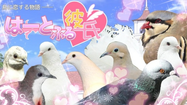 Crazy pigeon dating simulator Hatoful Boyfriend being delisted for PlayStation, iOS, and Android