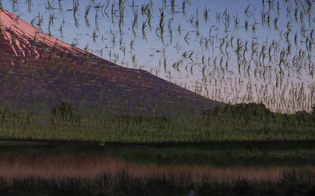 Beautiful Mt Fuji photo looks like a buggy video game scene
