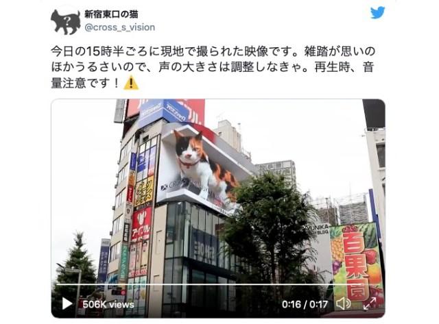 Giant cat appears on new 3-D billboard outside Shinjuku Station 【Video】