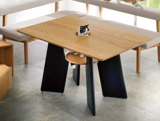 New interior necessity: Japanese dining table with a hole for your cat right in the middle【Pics】