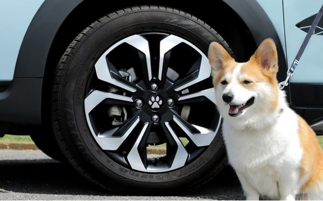 Honda releases official doggy wheel accessories, Shiba Inu shift selectors for your car【Photos】
